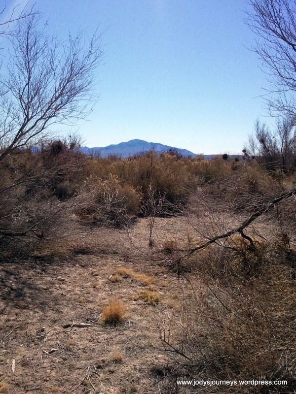 Death Valley desert view