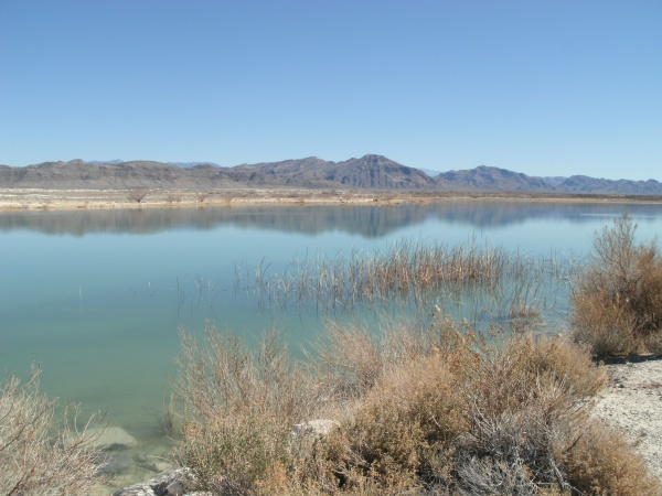 ash meadows lake